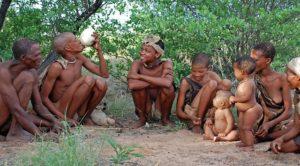 évolution et espérance de vie - bonnes pratiques de santé environnementale avec les bushmen