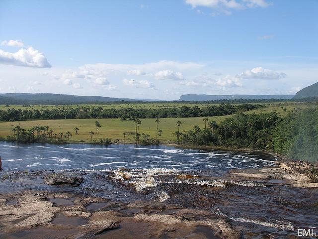 Nature verte et bleue - paysage de savanne