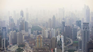 polluants environnement Debra Dadd5