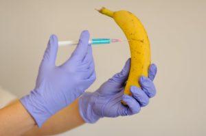 Génétiquement incorrect Séralini 3